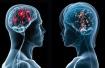 Тесты на YouBeauty: Какой отдел Вашего мозга работает лучше всего?